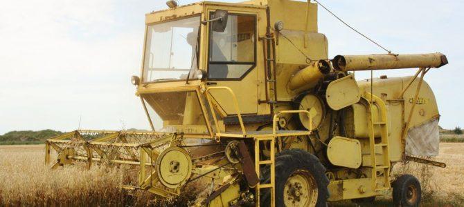 Clayson M 103